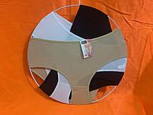 Труси жіночі Бамбук розмір 52-56 МІКС (24 шт)