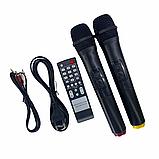 Bluetooth колонка портативная с двумя микрофонами + подключение флешки 1000 W BT120D 212D, фото 9