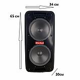 Портативная колонка Bluetooth на аккумуляторе Party box 2 микрофона 1000W широкого спектра использования 1010, фото 2