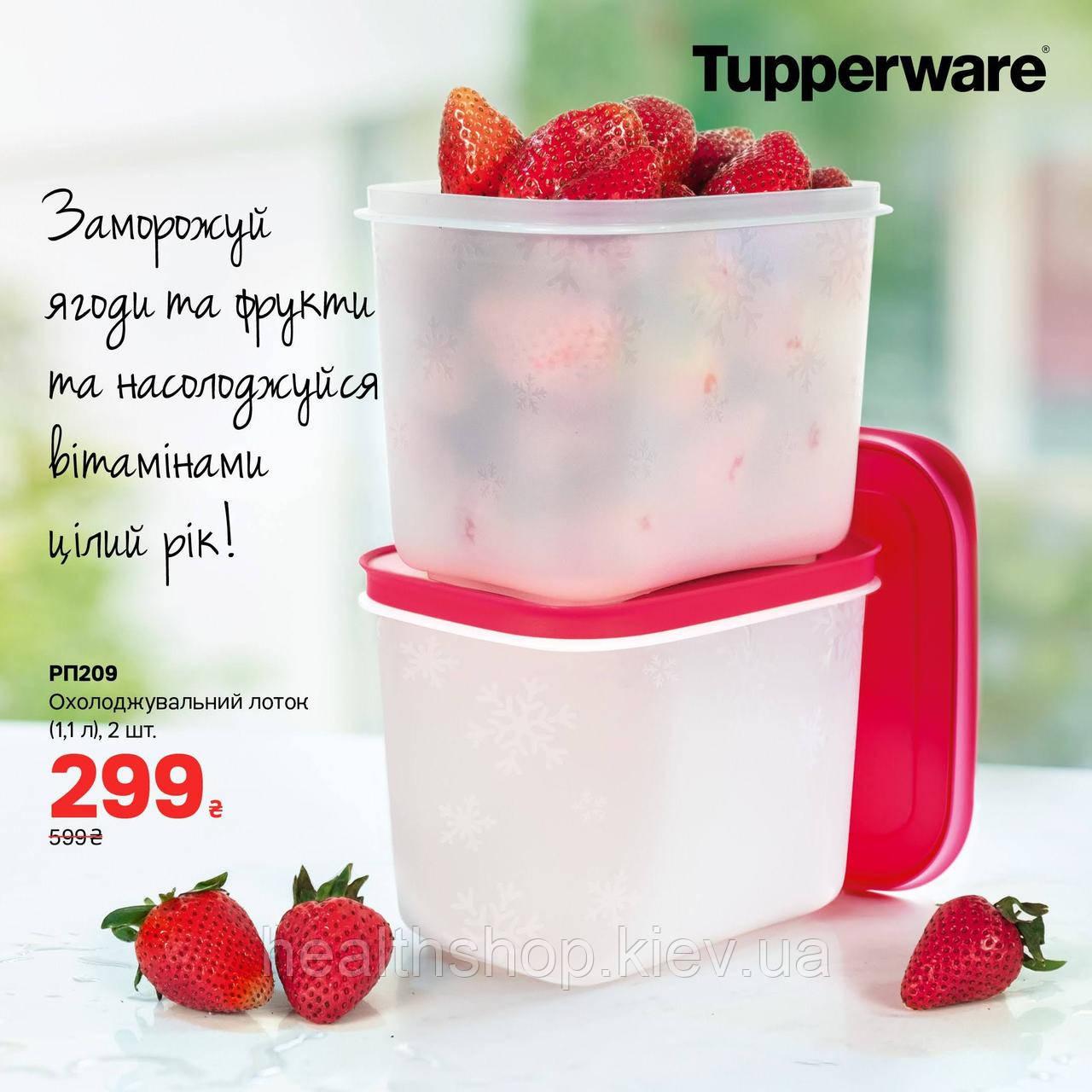 Охлаждающие лотки (1,1 л) высокие, 2 шт Tupperware (Оригинал) Тапервер