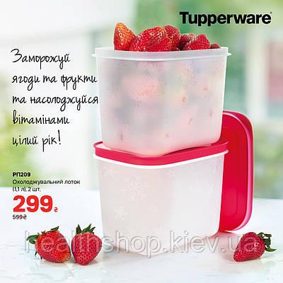 Охолоджуючі лотки (1,1 л) високі, 2 шт Tupperware (Оригінал) Тапервер