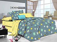 Двуспальный комплект постельного белья евро 200*220 хлопок (16289) TM KRISPOL Украина