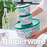 Набор контейнеров Иллюмина 350 мл,550 мл,800 мл, 2,5 л , 4,3 л Tupperware 5 шт. купить красивый подарок, фото 2
