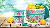 Набор контейнеров Иллюмина 350 мл,550 мл,800 мл, 2,5 л , 4,3 л Tupperware 5 шт. купить красивый подарок, фото 3