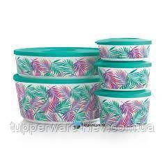 Набор контейнеров Иллюмина 350 мл,550 мл,800 мл, 2,5 л , 4,3 л Tupperware 5 шт. купить красивый подарок