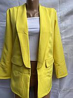 """Піджак жіночий класичний яскравий, розміри 42-48 (6кол) """"EXCLUSIVE"""" купити недорого від прямого постачальника"""