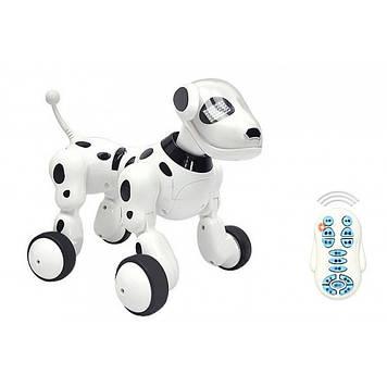 Робот-собака на радиоуправлении KaiLanToys 619 белый