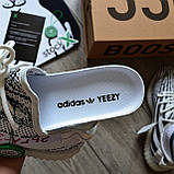 Кроссовки Adidas Yeezy boost 350 v2 Zebra, фото 6