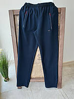 Демисезонные мужские cпортивные штаны  3XL, фото 1