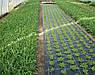 Агроткань Agreen мульчують 85 г/м2 1,6х100 м., фото 2