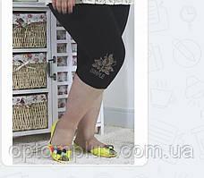 Женские бриджи батал (56-64) оптом купить от склада 7 км