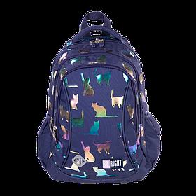 Рюкзак школьный ST.RIGHT BP26 Holo Cats 650 г 39x27x17 см 20 л Синий