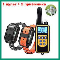 Электронный ошейник RT880 для дрессировки собак (1 пульт +2 приемника)