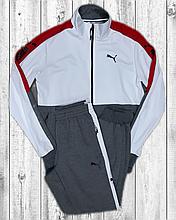 Чоловічий спортивний костюм Puma білий з сірим трикотажний