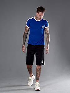 Мужской костюм футболка и шорты 1344 (РО)