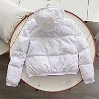 Жіноча куртка з матовою плащової тканини біла SKL11-290232