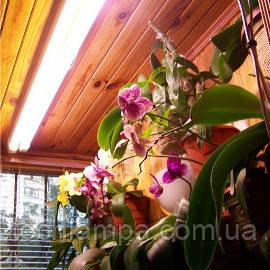 Лампа для растений 15W/77 Fluora