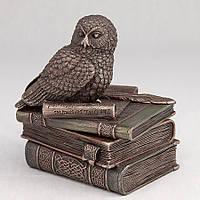 Шкатулка Veronese Сова на книгах 12 см 75510