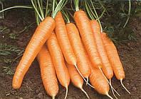 Морковь Рига F1 (Рига Р.З.), 100 тыс. семян, тип Нантес, 120 дн. (калибр <1,6)