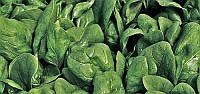 Шпинат Бoa (Боа Р.З.) 1 млн. семян