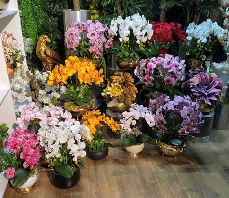 Орхидея - изысканное украшение дома