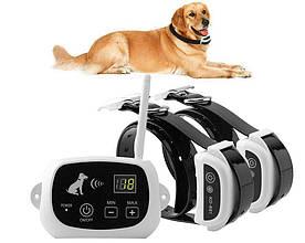 Бездротовий електронний паркан для собак Pet KD-661 з 2-ма ошийниками