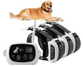 Бездротовий електронний паркан для собак Pet KD-661 з 3-ма ошийниками