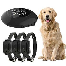 Бездротовий електронний паркан для собак Wireless Dog Fence WDF-558 з 3-ма ошийниками