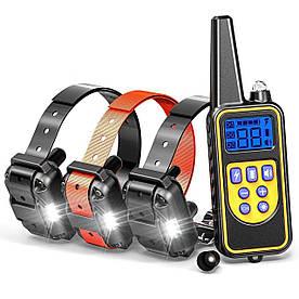 Електронашийник для дресирування собак Pet DTC-800 з 3-ма ошийниками