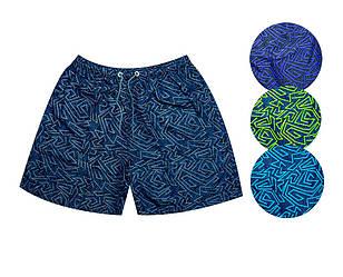 Шорты мужские пляжные, принт геометрия (размер 3XL)