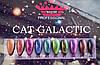Гель-лак Cat Galactic №01 Master Professional, фото 2