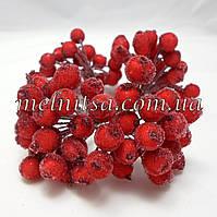 Ягоды для декора, калина в сахаре ,  красная 20шт