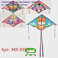 Повітряний змій MR 0591 шіріна115см,  дліна60см,  хвост105см,  4віда,  в кульку,  9-74-1, 5см