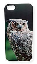 Чехол бампер для iPhone 5 5S с принтом Сова
