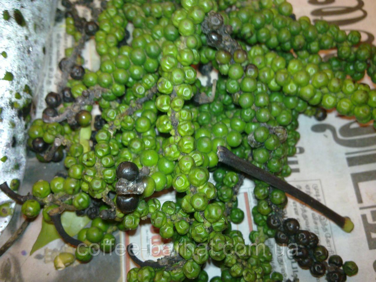Перець зелений горошок від 5 кг