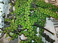 Перец зелёный горошек купить оптом и в розницу