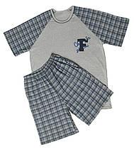 Пижама трикотажная мужская, футболка и шорты 21006 Timmi коттон Серая
