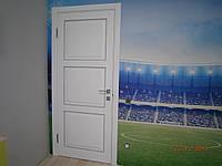 Двери деревянные межкомнатные, фото 1