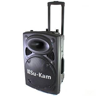 Портативная беспроводная колонка Su-Kam BT120D/212D + 2 микрофона
