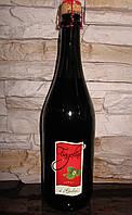 Вино игристое красное Fragolino i Gelsi земляника 750 мл.