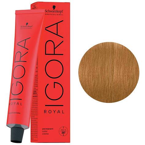 Краска для волос  9-57 Schwarzkopf Igora Royal блондин золотисто-медный 60 мл, фото 2