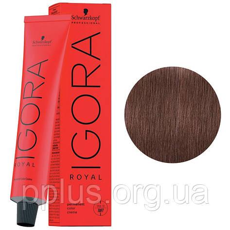 Фарба для волосся 7-48 Schwarzkopf Igora Royal середньо-русявий бежево-червоний 60 мл, фото 2
