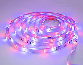Диодная Led RGB лента 3528 белая на 4.5м. светодиодная с пультом + РГБ ЛЕД контроллер | світлодіодна стрічка
