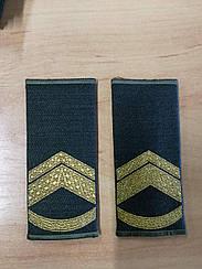 Погоні-муфти ЗСУ Підполковник повсякдені (4329)