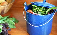 Пищевые отходы могут стать удобрением даже в квартире