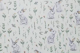 Сатин-твил Кролики