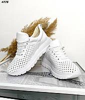 Женские кожаные кроссовки с перфорацией 36-41 р белый