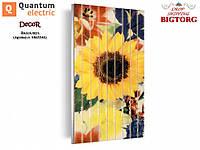 Кераміко-вуглецева панель Quantum Electric Сонях / Керамико-углеродная нагревательная панель Квантум Электрик