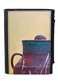 Блокнот DM 01 Сова в глечику різнобарвний SKL47-176813