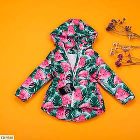 Дитячий демісезонний парку з кавунами різнобарвна SKL11-260952